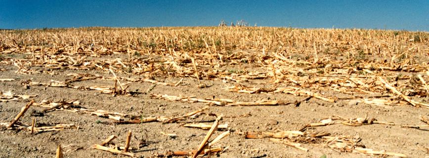 Katasztrófatípusok - aszály aloldal fejlécképe