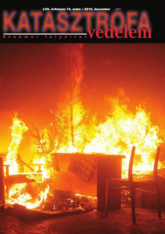 A Katasztrófavédelem magazin LVII. évfolyam 12. szám megtekintése